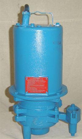 Picture of Barnes 2 HP UltraGrind Grinder Pump, Model PZM-SGVF2022L