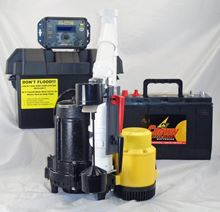 Picture of Dual AC & 12 Volt DC Pump System, Model PK-ALP-AVF-12V